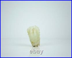 A Russet Jade Carving of'Finger Citron' with Wooden Stand