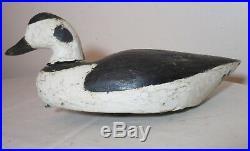 Antique carved wood Folk Art bufflehead squaw east coast duck decoy sculpture
