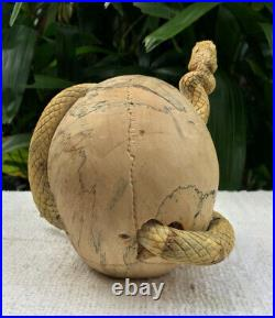 Medusa Skull Carved Sculpture Wood Human Skull Snake Skull Realistic Unique