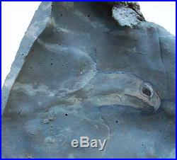 Shell to Shell Original Art Wood Carving Sea Turtle Ocean Sculpture Rick Cain