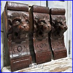 THREE GOTHIC LION CORBEL BRACKET Antique french carved wood salvaged sculpture