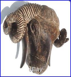 Vintage Baule Ram Hand Carved wood Ram Mask Elegant Wall art Décor. Rare