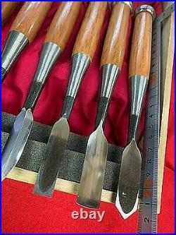 Wood Carving Chisel Akatsuki tool set 10pieces Nomi japanese Carpenter tool