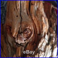 Wood Tree Carved Figurine Sculpture Wooden Wizard Gnome Old Man Face Tree